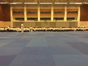 Aikido-Grossmeisterlehrgang-Paris-Feb-2018