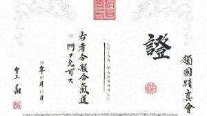 Urkunde zur Erreichung des 12. Mon im Aikido Kindertraining
